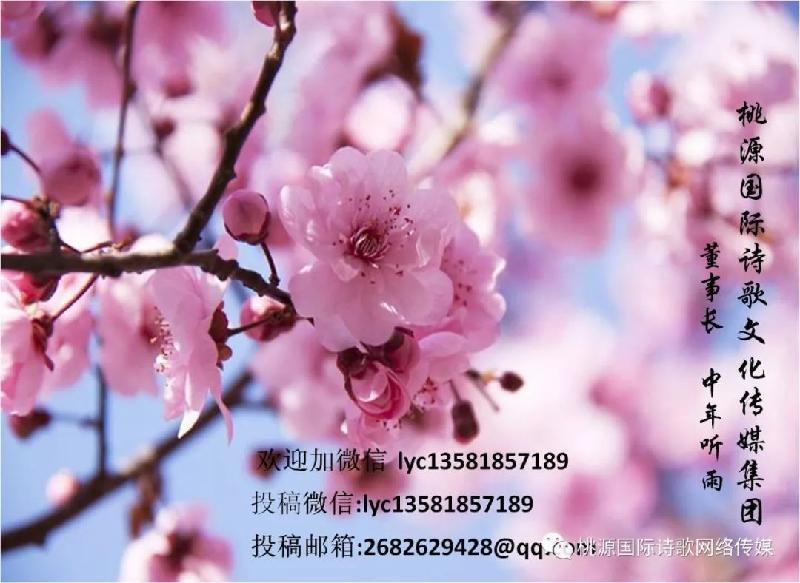 mmexport1565595596933